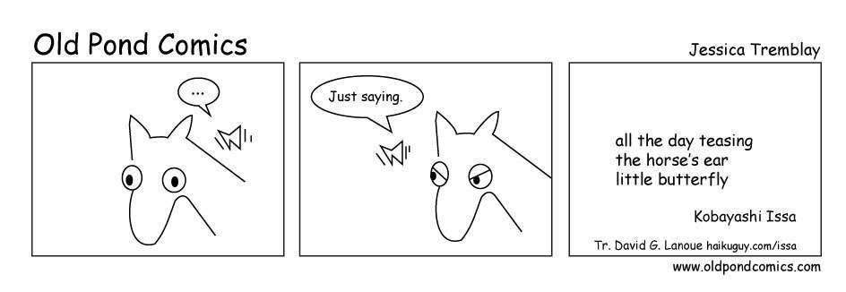 horse teasing