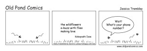 75_love_wildflowers