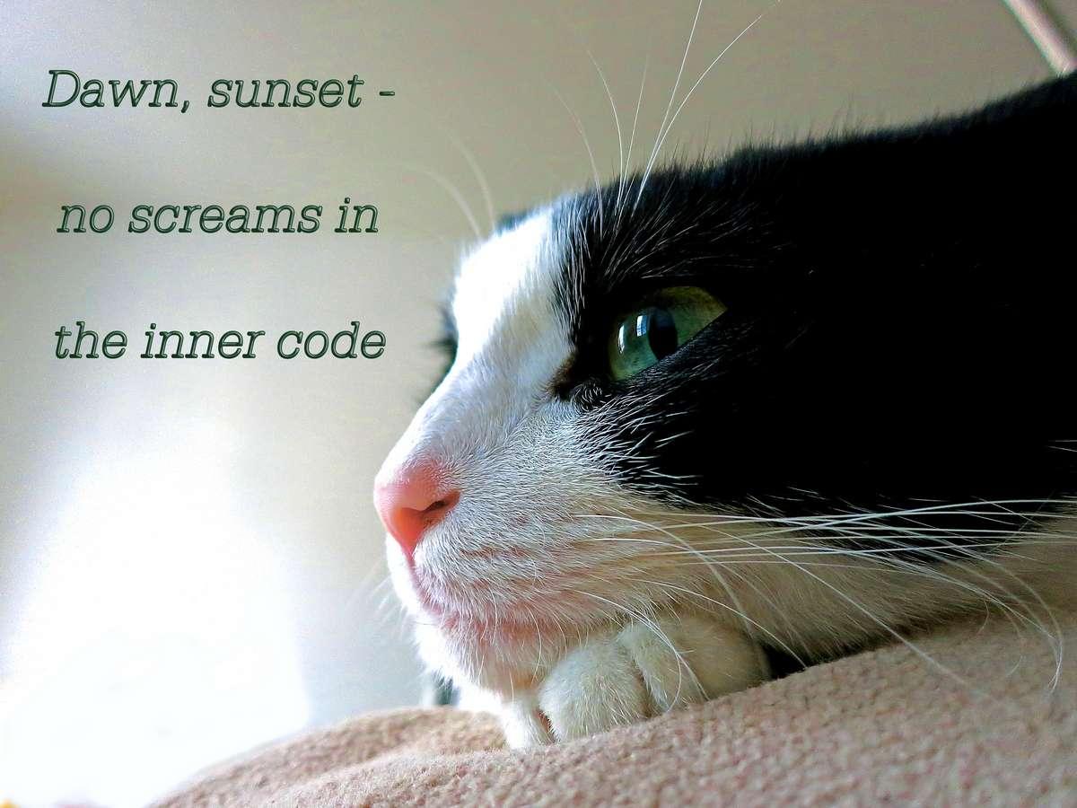 the inner code