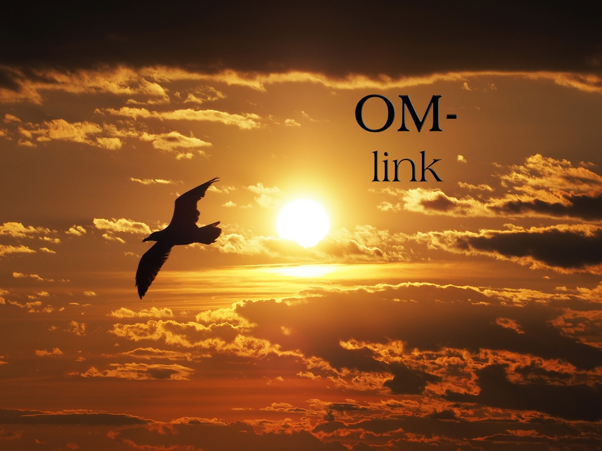 om / link