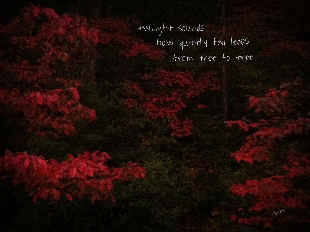 twilight sounds