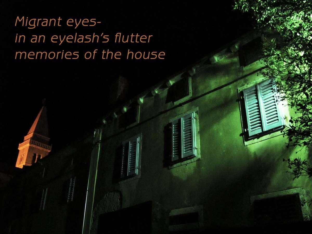 migrant eyes