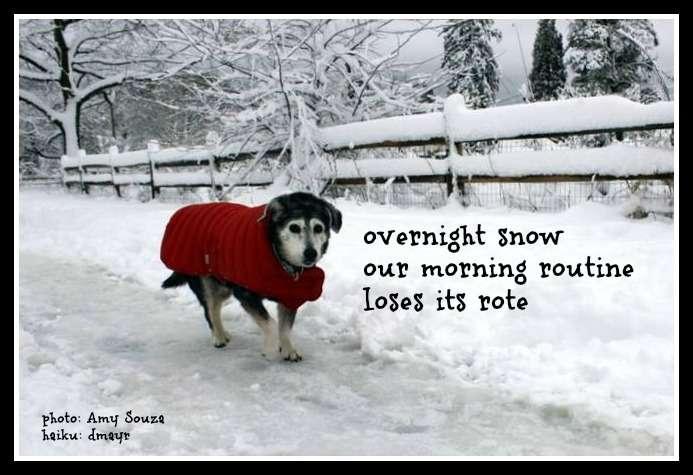 overnight snow