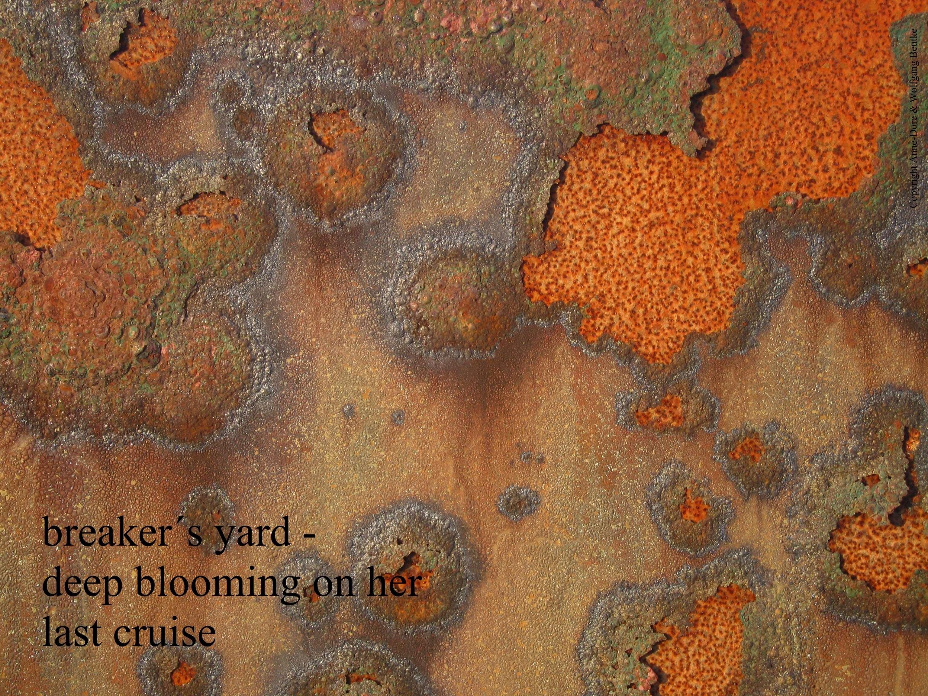 breaker's yard