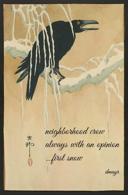 neighborhood crow