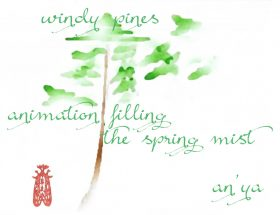 windy pines